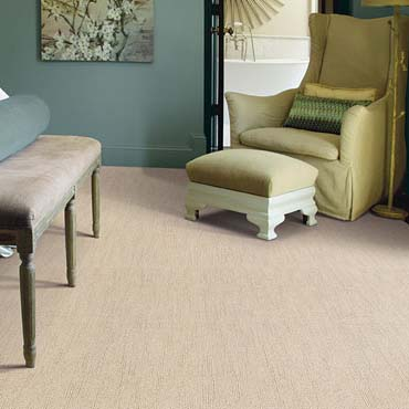 Caress Carpet by Shaw | Springfield, MO